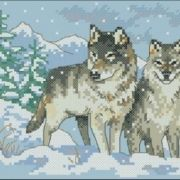 6800 A Pair of Wolves